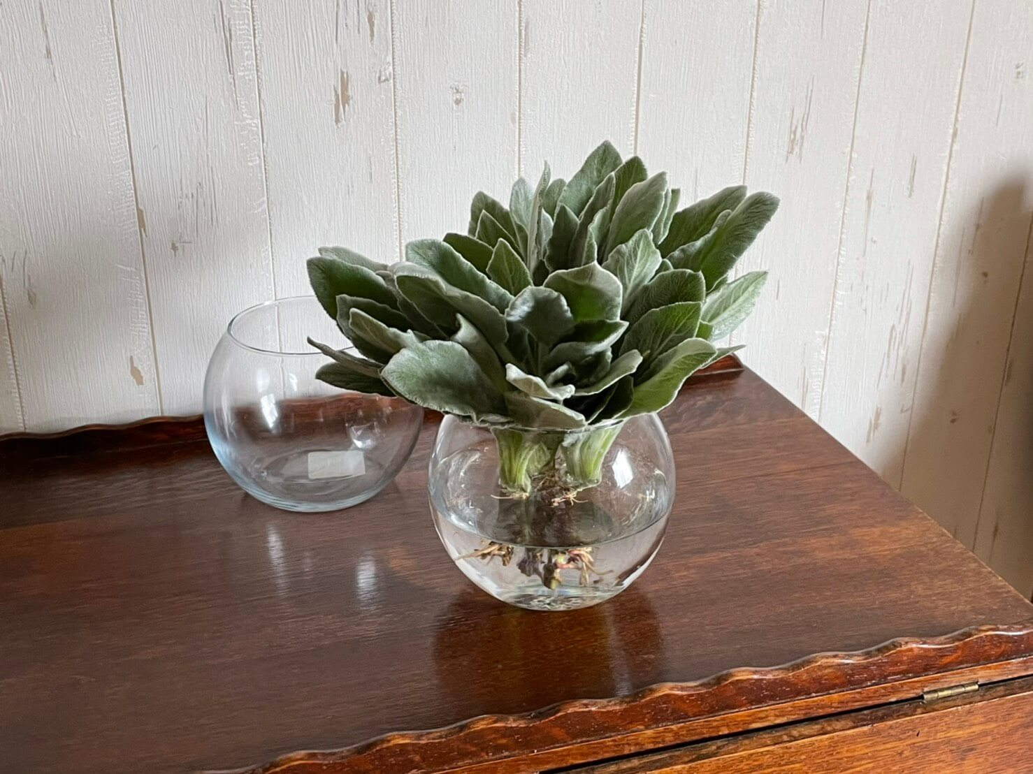 Anchor Hocking Glass Flower Bowl 丸い形のフラワーベース