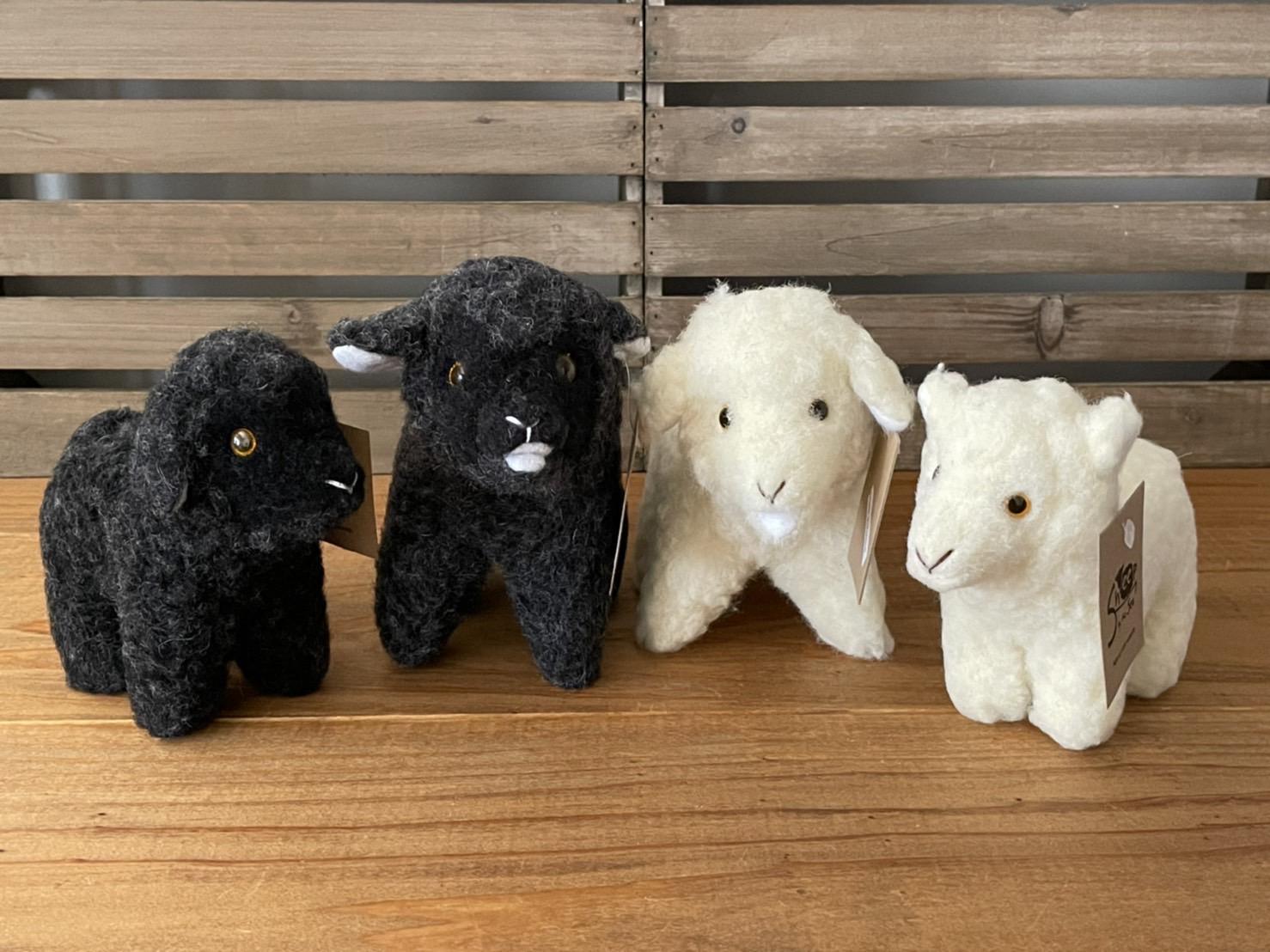 COLDBREAKER SHEEP MIDI &MINI  ウールボアのひつじ